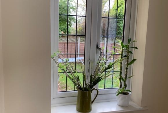 gallery-windows44
